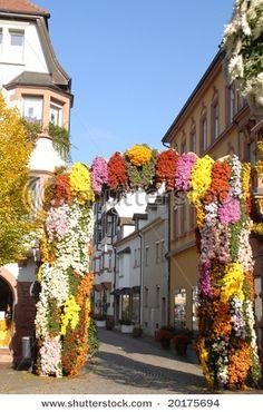 Lahr, Deutschland, during Chrysanthemum Festival