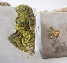 <p>Dana Barnes' Endolith Casts extends her ongoing exploration of textural composition.  As a landscape of contiguous forms, the work references the seemingly immutable nature of lichen growth and its complex relationship with the unyielding materials it colonizes. For more info visit: www.danabarnesstudio.com</p>
