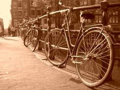 Bikes and Boats in Summer - Bussines and Marketing: I´m looking forward for a new opportunity about my degrees dinamitamortales@ gmail.com