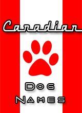 Canadian Dog Names list at puppy-names-hq.com