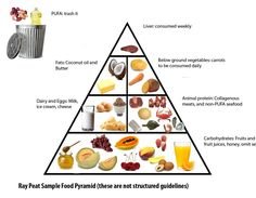 RAY PEAT pyramid...I will try this new eating approach, actually it is pretty close to how I ate before I went vegetarian/vegan, paleo...