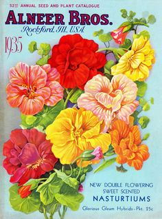 """""""Alneer Brothers Reliable Seeds"""" catalog  (front cover)  1935"""