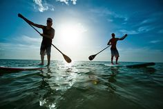 Where to rent a paddle board in Gulf Shores