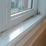 Remove Black Mold On Pinterest Mold Removal Mildew