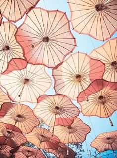 casamento do ator de deadpool - guarda chuvas