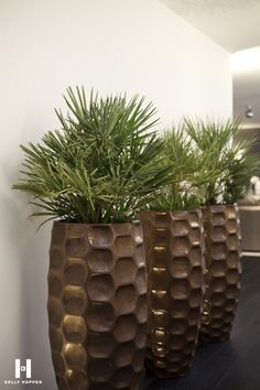 Kelly Hoppen for Regal Homes @ Circus Road www.regal-homes. Diy Garden, Home And Garden, Kelly Hoppen Interiors, The River, Buy Flowers Online, Interior Plants, Contemporary Home Decor, Flower Boxes, Planter Boxes