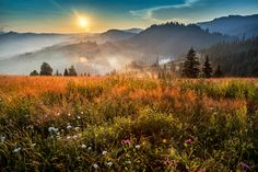 sunset in Bucovina by Dumitrescu Catalin on 500px