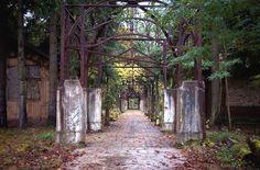 lostplaces - vergessene orte: Die Beelitzer Heilstätten