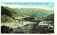 Avalon Catalina Island California CA 1920 Catalina Country Club Vintage Postcard