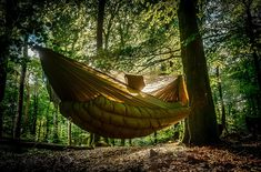 9 Beautiful Free Camping Spots in Oregon Best Camping Hammock, Camping Blanket, Tent Camping, Campsite, Camping Hacks, Camping Spots, Small Cottages, New River, Hanging Out