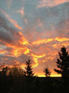 Sunrise Canada: Nola
