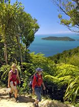 The Queen Charlotte Track is wonderful, with coves, camping and forests. Marlborough Sounds, Glorious Days, South Island, Mountain Biking, New Zealand, Golf Courses, Cruise, Road Trip, Charlotte