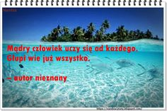Więcej cytatów pod linkiem: https://nambiacytaty.blogspot.com/ https://nambiaqoute.blogspot.com  https://nambia.colwayinternational.com/