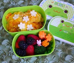 Happy Little Bento - beautiful little lunches designed for kids