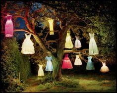 tree dress lights