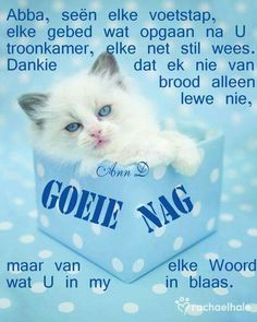 Goeie nag Good Night Wishes, Good Morning Good Night, Good Knight, Evening Greetings, Goeie Nag, Sleep Tight, Afrikaans, Positive Thoughts, Qoutes