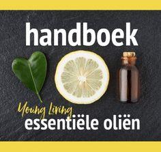 Het Handboek | iOlie.nl