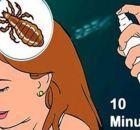 Ajo y vino, un poderoso remedio natural que cura mas de 100 enfermedades. ¡Aprenda a prepararlo! - Salud por Día