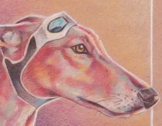 "Jet Settin' Greyhound - Vicki Liu Colored Pencil on Kraft Paper. 2016.   Check out new work on my @Behance portfolio: ""Jet Setter"" http://be.net/gallery/37294981/Jet-Setter"