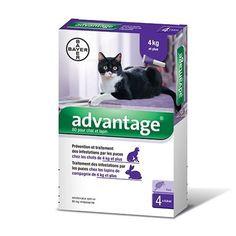 Bayer Advantage 80 Tratamiento Antipulgas Gatos x 4 pipetas