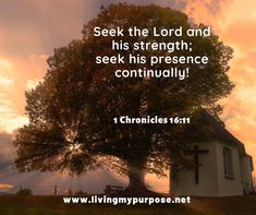 1 Chronicles 16, Seek The Lord, Bible Verses, Movie Posters, Film Poster, Scripture Verses, Bible Scripture Quotes, Bible Scriptures, Billboard