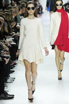 Christian Dior Fall 2014 Rtw Look  (10)