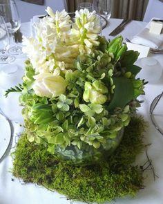 Green/white moss arrangement Pollon Flowers