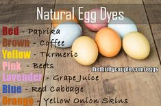 Natural Egg Dyes Recipes from Real Foods and Spices