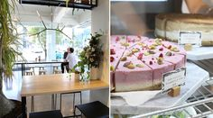 Major Sprout - cafe with healthy & Korean-inspired dishes | Auckland CBD