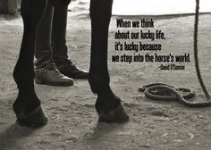 """Equestrian quote, """"When we think about our lucky life, it's lucky because we step into the horse's world."""""""