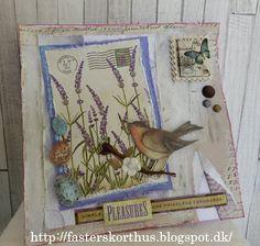 Fasters korthus: Bird card