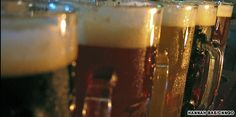 CRAFT BEER: Seoul has a surprising range of high-quality ale houses.