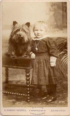 Victorian Terrier CDV~Cute Hairy Big-Headed Dog & Sweet Girl~Antique Photograph