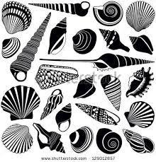 Image result for ammonite stencil