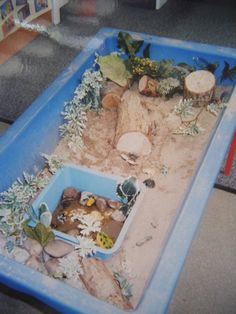 Adding a bowl to create a pond for the wildlife small world play in the sand. Sand Tray, Water Tray, Sand Table, Sand And Water, Preschool Science Activities, Nursery Activities, Activities For Kids, Sand Pits For Kids, Kids Kitchen Accessories