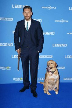 Tom Hardy brought his dog to his movie premiere in London. Aww!!