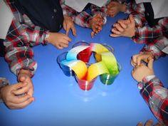 Bu sefer koştu suyumuz , hem de çok hızlı bir şekilde :) Hem suyun kılcallığını ,su moleküllerinin aralarındaki çekim kuvvetiyle birbir... Science Experiments Kids, Science For Kids, Science Activities, Science Projects, School Projects, 3 Year Old Activities, Montessori, Preschool Education, Educational Websites
