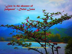 """""""Love is the absence of judgment"""" inspirational quote by Dalai Lama and related inspirational gifts. Inspirational Quotes About Love, Love Quotes, The Absence, Dalai Lama, Compassion, In This Moment, Peace, Twitter, Character"""