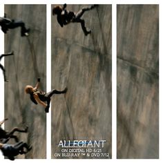Discover & share this Lionsgate Home Entertainment GIF with everyone you know. GIPHY is how you search, share, discover, and create GIFs. Divergent Trilogy, Divergent Insurgent Allegiant, Home Entertainment, Entertaining, Brave, Gifs, Search, Twitter, Wall