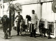 Crew members taking care of the dog's on the Titanic.