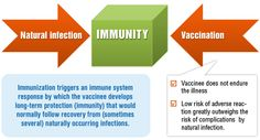 Vaccines reproduce a natural infection with less complications