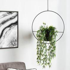Isai Hoop Metal Hanging Planter – Best Home Plants Metal Hanging Planters, Diy Hanging, Hanging Plants, Indoor Plants, Modern Planters, Cheap Planters, Porch Plants, Tall Planters, Outdoor Planters