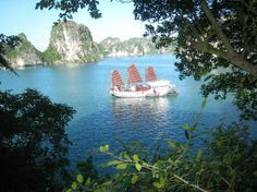 Red Dragon on Halong Bay. more information