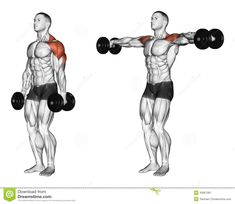 Exercising. Lifting Dumbbell In Hand - Download From Over 59 Million High Quality Stock Photos, Images, Vectors. Sign up for FREE today. Image: 43667061