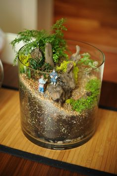 Terrarium Note: Link takes you to empty flicker page and not to the actual photo in the pin!