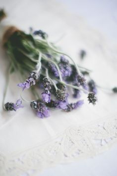 #lavender  Photography: Brandon Chesbro - brandonchesbro.com  Read More: http://www.stylemepretty.com/2012/08/31/nashville-wedding-at-mcconnell-house-from-brandon-chesbro/