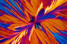 Crystallized beverages under a microscope