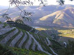 Douro Subregion, Portugal - Wikipedia, the free encyclopedia