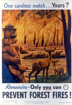 Forest fire prevention poster showing Smokey the bear Wildland Firefighter, Smokey The Bears, Fire Prevention, Nature Posters, Vintage Mom, Wild Fire, My Old Kentucky Home, Forest Service, Camping Theme