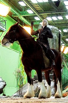 skwadgirl:  nishamura22:  Lee Pace as a pure sex and his unimpressed horse  Honestly most beautiful thing I've ever seen. That horse is freaking huge! Is it the Shire horse breed?   I think so :)